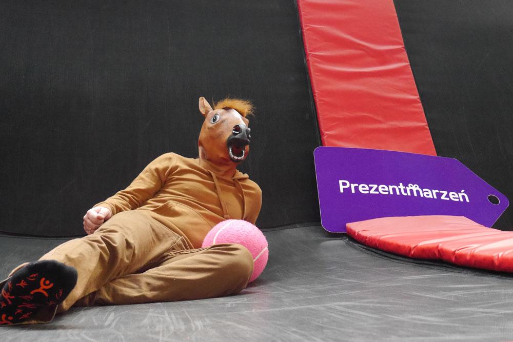 Koń pozuje do zdjęcia w Parku trampolin z reklama Prezent Marzeń com